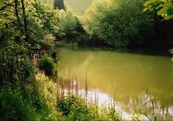 Sunridge lodge south hams devon south hams england for Private fishing lakes