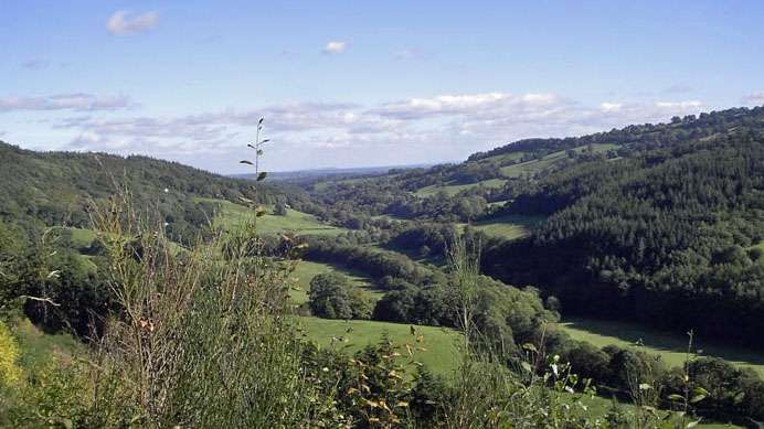 Dog Friendly Cottages Llangollen